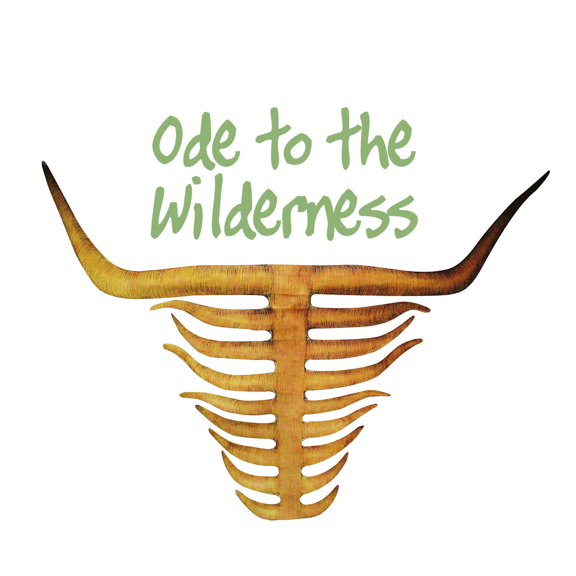 Ode to the Wilderness